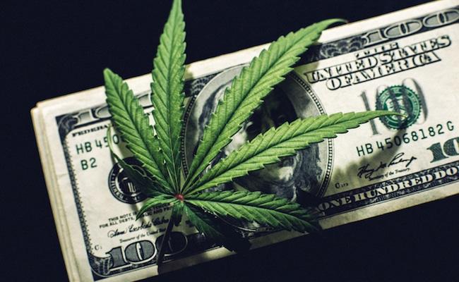 marijuana stocks news articles june