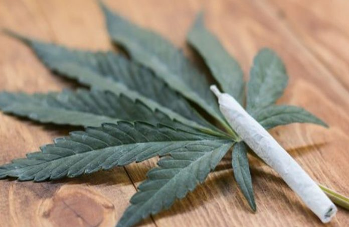 marijuana-joint-over-cannabis-leaf-pot-weed-legalize