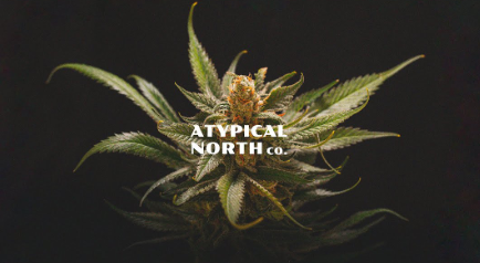 AtypicalNorthCo