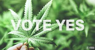 Vote 'YES' Campaign – NZDF Cannabis Control Referendum
