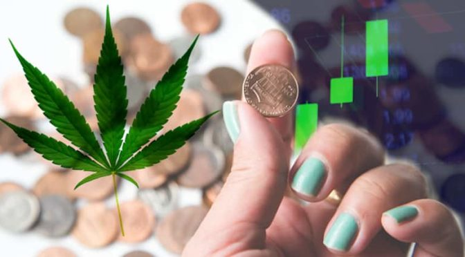 2 Marijuana Stocks To Watch In 2021 That May See More Gains