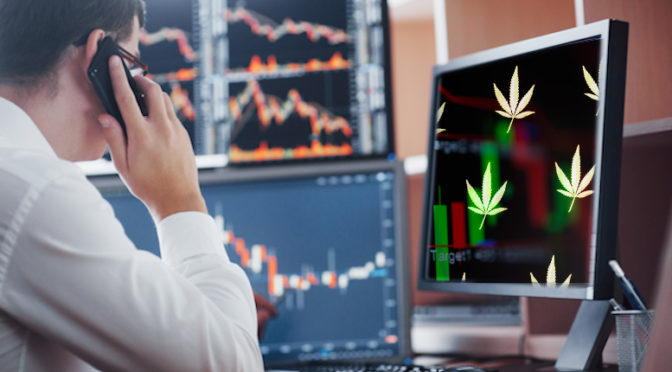 Are These The Best Marijuana Stocks For The Long-Term?