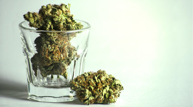 South Dakota: Protections for Medical Cannabis Patients Take Effect Today
